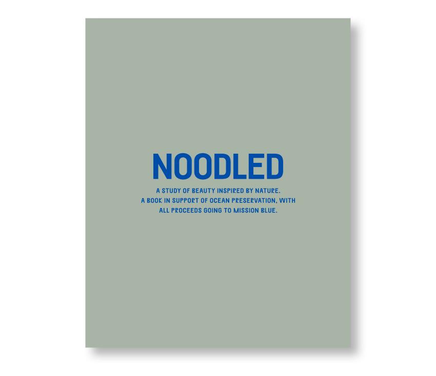 NOODLED01